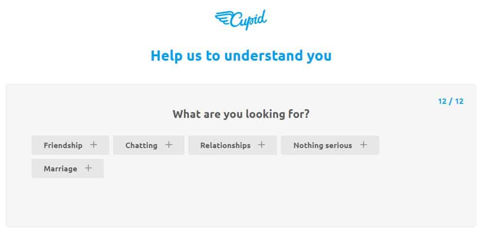 Cupid.com about you profile section