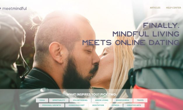 Meet Mindful Review